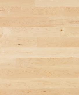 Ahorn kanadisch/Erable canadien/Acero canadese  Ohne Bürstung  Klebeparkett  matt versiegelt  ohne Fase